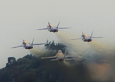 2014 Seafair Blue Angels