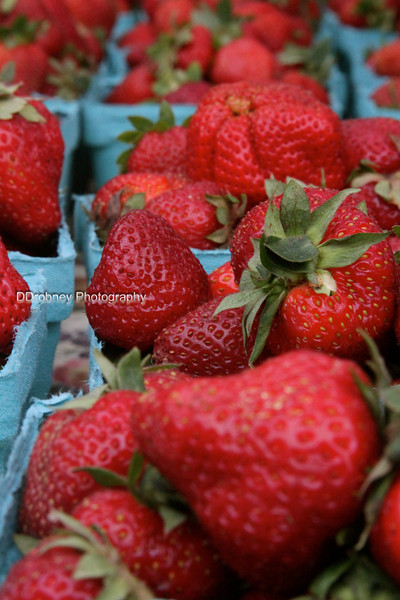 Lots of strawberries on hand today...such great reds for photos!  ;-)
