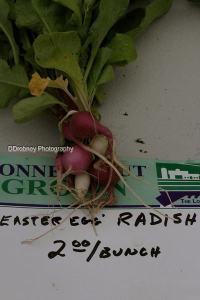 Easter egg radish...loved the name.  ;-)