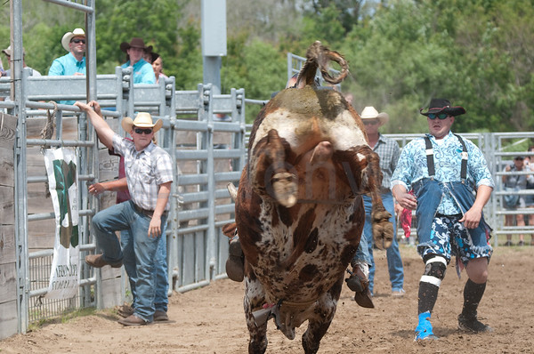 57th Annual Cracker Day Rodeo -  Bull Riding on Sat. Mar 31, 2012 in Flagler County