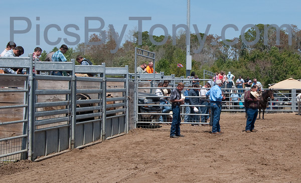 58th Annual Cracker Day Rodeo -  Bull Riding on Sat. Mar 30, 2013 in Flagler County