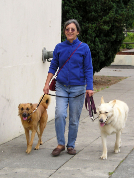 """On one break when I finished pretty early, I went strolling and saw some *real* dogs. Rescues. The light-colored one is a """"white"""" German Shepherd."""