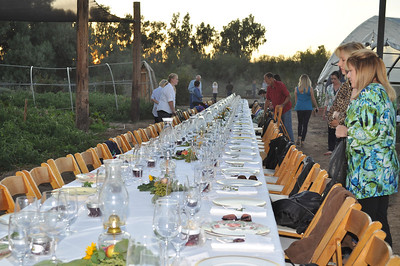 1st Annual Farm to Fork Dinner at Quail Hollow Farm CSA Moapa Valley community supported agriculture offering the freshest grown produce grown locally to serve the community. For a weekly basket of organic vegetables, fruits, herbs, milk, cheese, flowers delivered to your home Contact Laura and Monte Bledsoe at 702-397-2021 Email quailhollowfarm@mvdsl.com Visit Quail Hollow Farm website www.quailhollowfarmcsa.com Photographs in this public online gallery free downloads for Quail Hollow Farm by Mark Bowers of ReallyVegasPhoto.com
