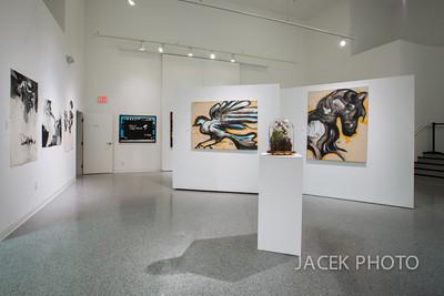 JACEK_6972