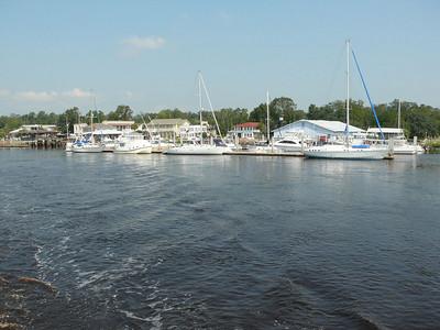 Cumberland Island - August 29, 2008