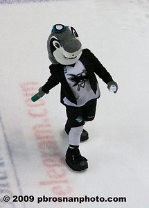 pb_wpc_sharks_fan_102_(Web)