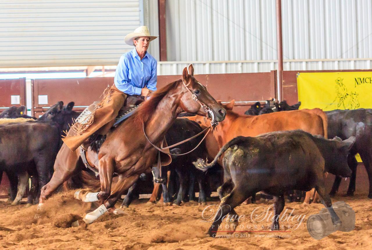 NM Cutting Horse-6163