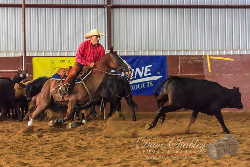 NM Cutting Horse-6208