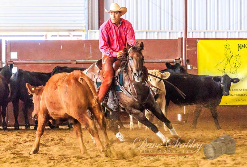 NM Cutting Horse-6952