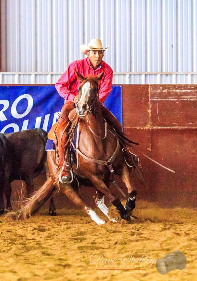 NM Cutting Horse-6935