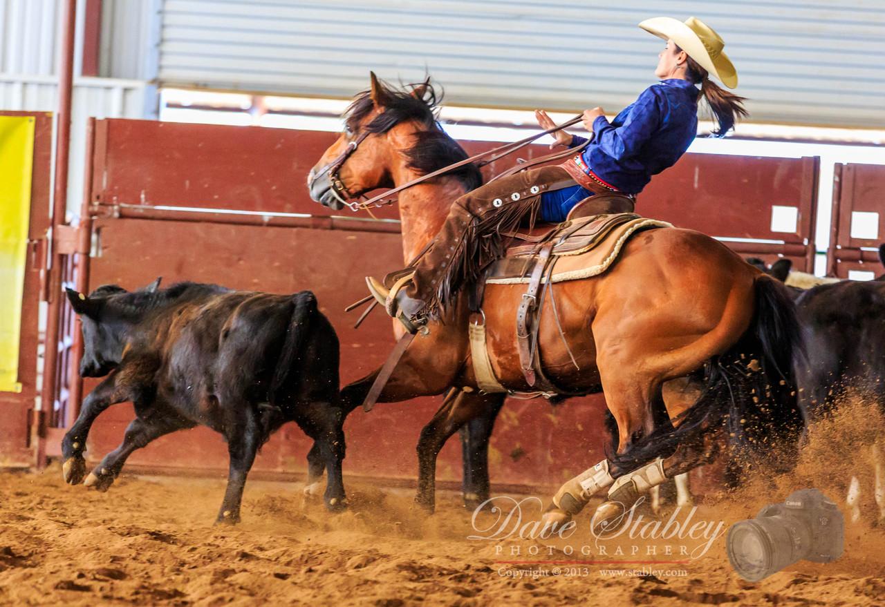 NM Cutting Horse-6883