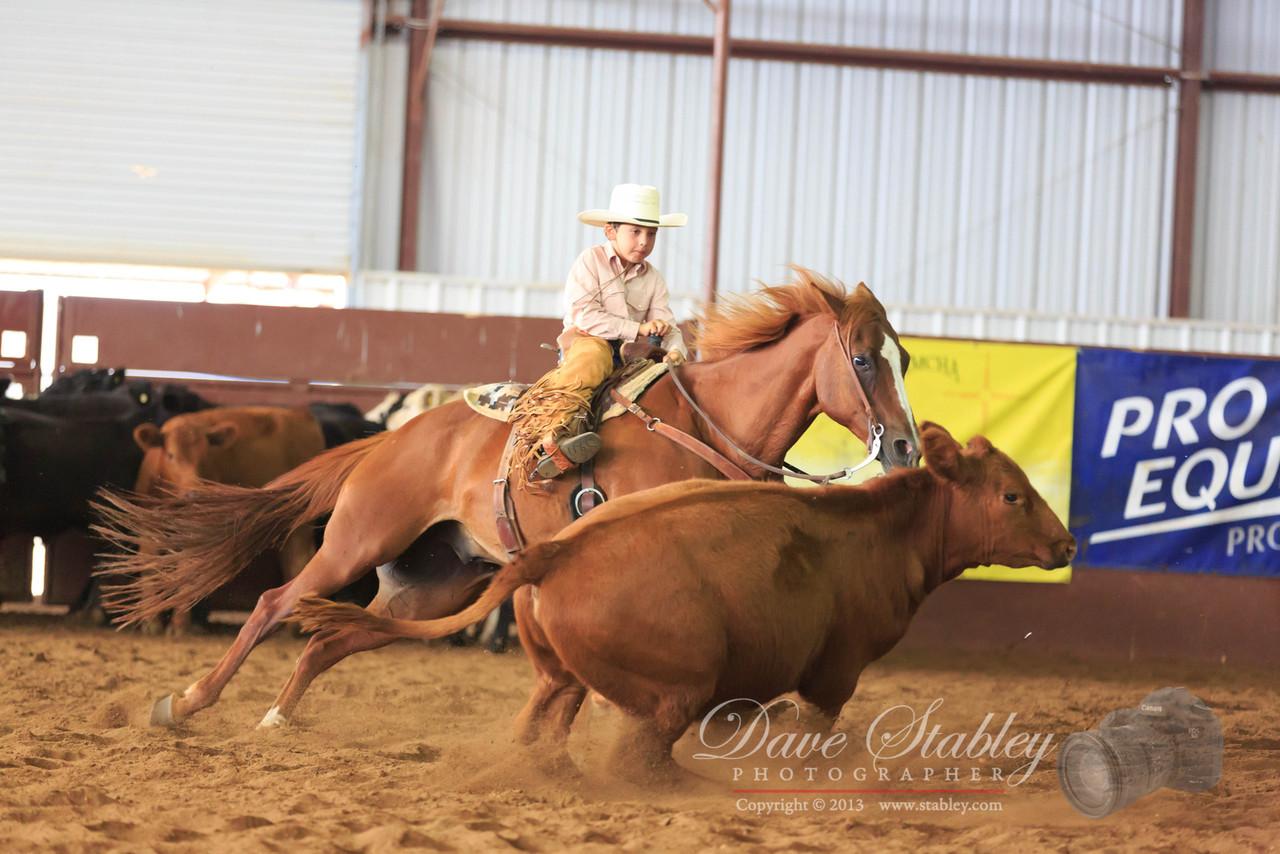 NM Cutting Horse-6916