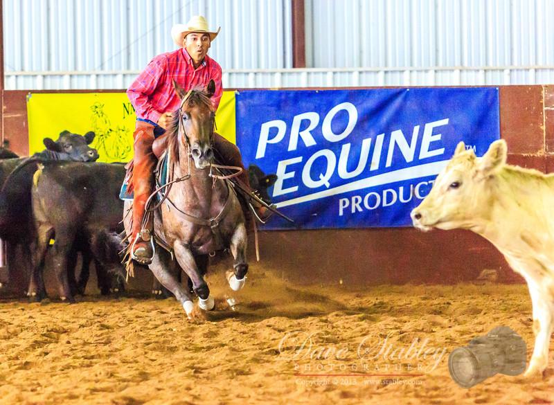NM Cutting Horse-6967