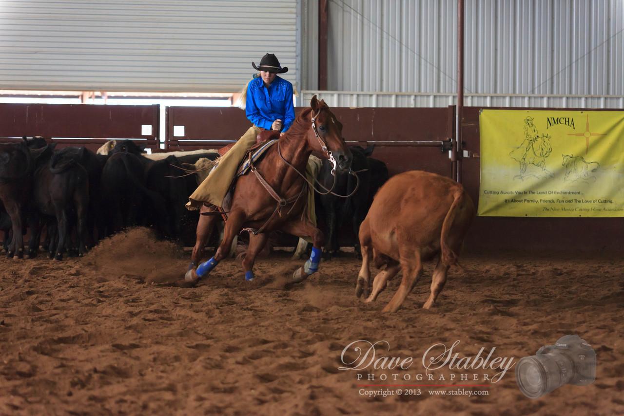 NM Cutting Horse-6200