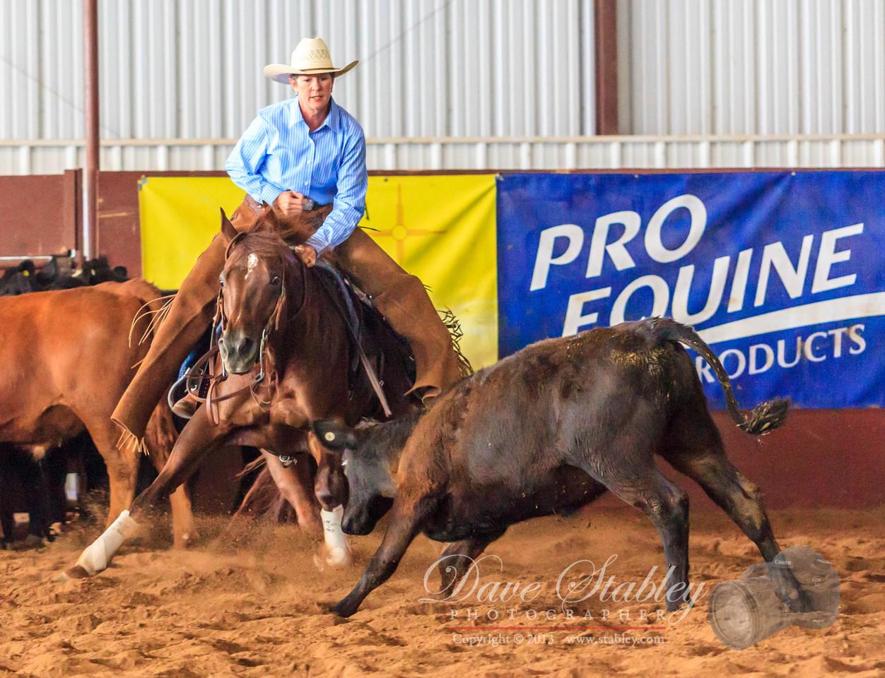 NM Cutting Horse-6166