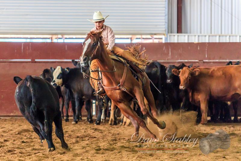 NM Cutting Horse-6184