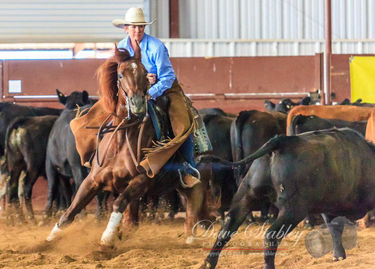 NM Cutting Horse-6149