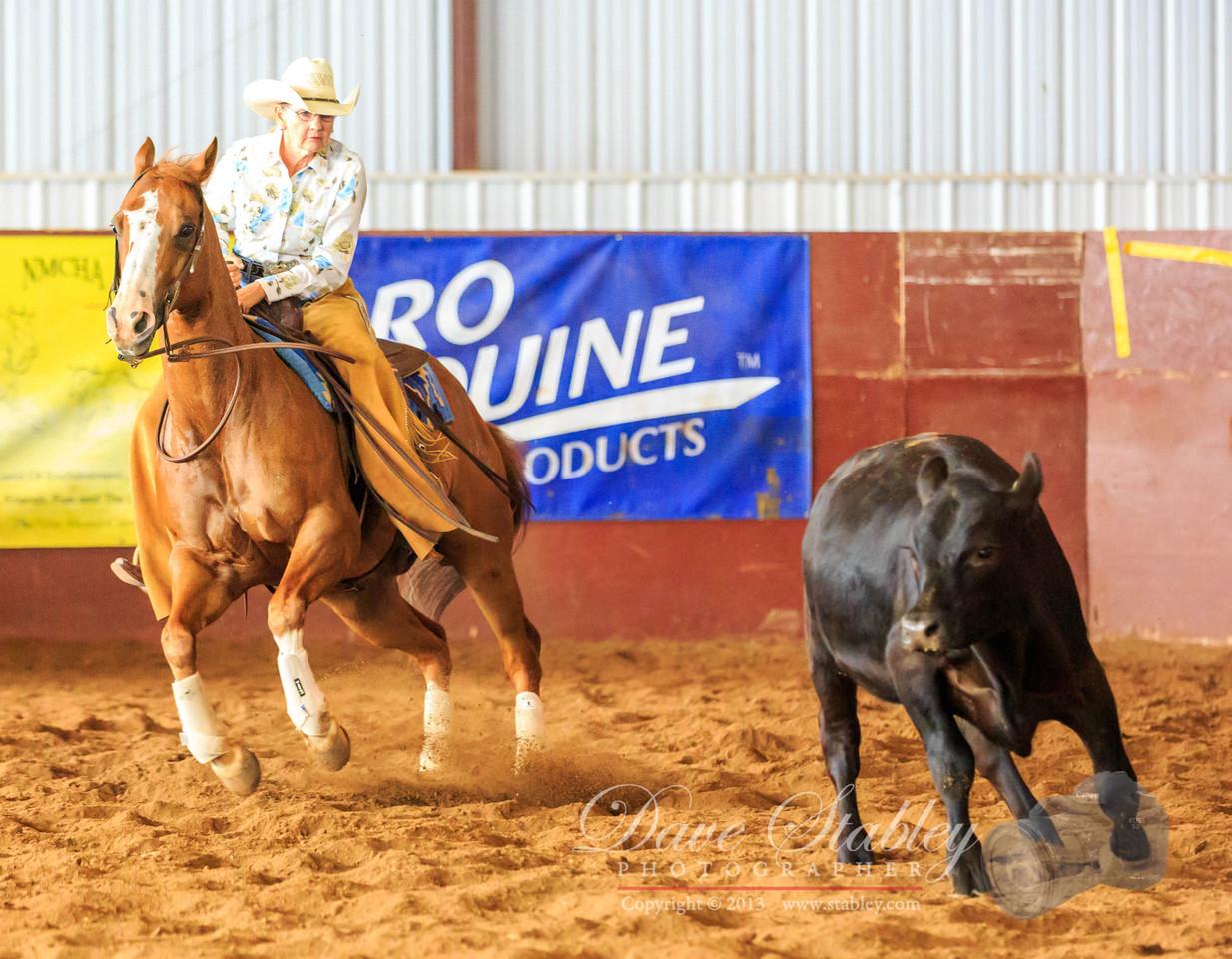 NM Cutting Horse-6849