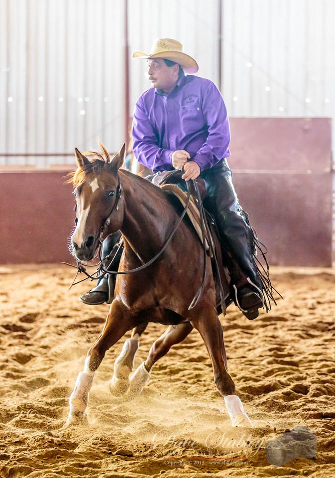 NM Cutting Horse-6771