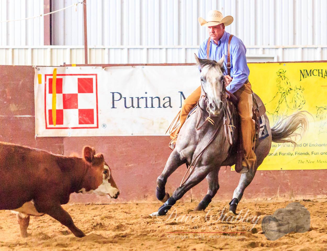NM Cutting Horse-7009
