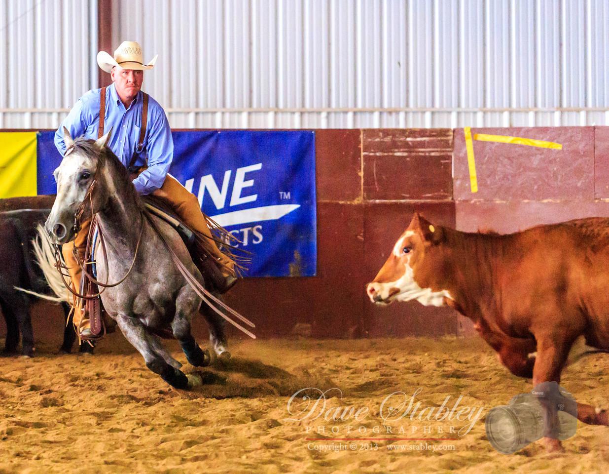 NM Cutting Horse-7006