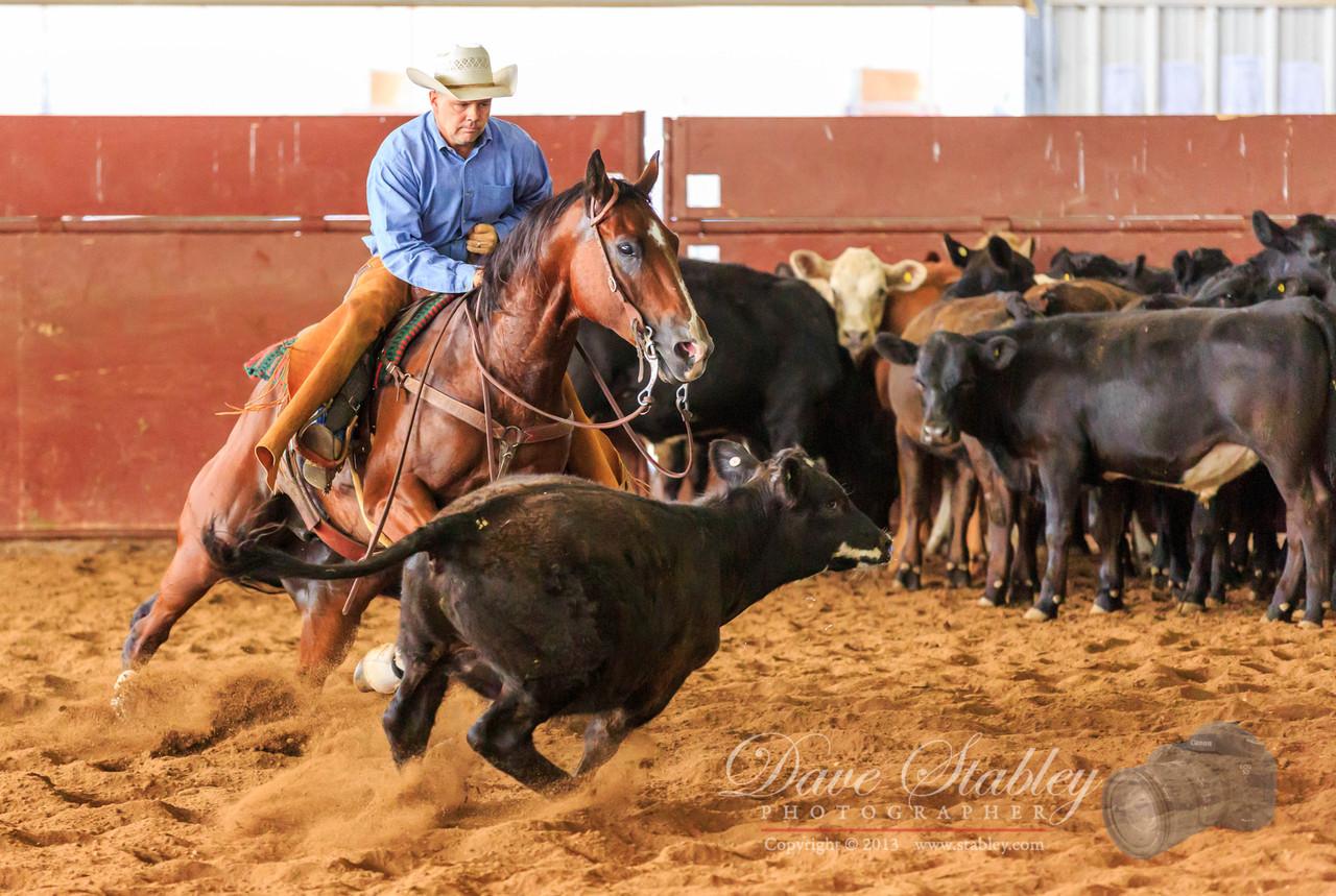 NM Cutting Horse-6820