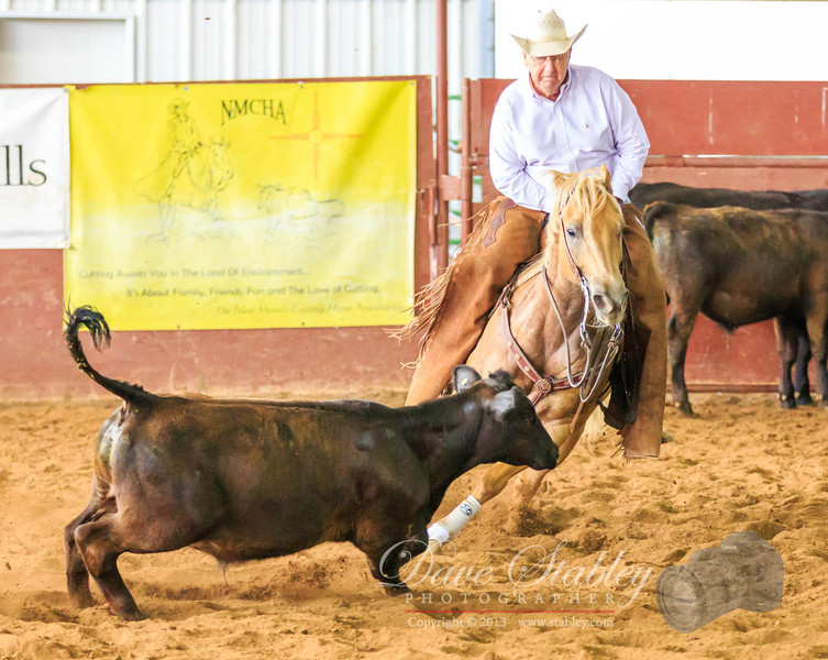 NM Cutting Horse-6829