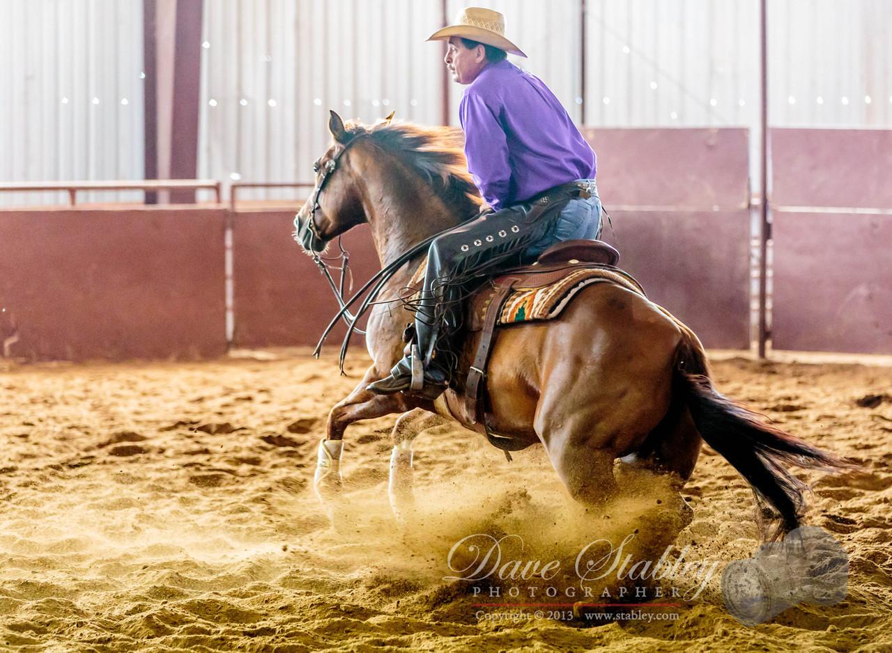 NM Cutting Horse-6774