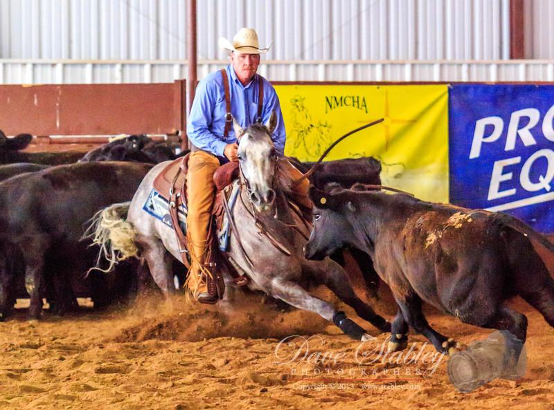 NM Cutting Horse-7024