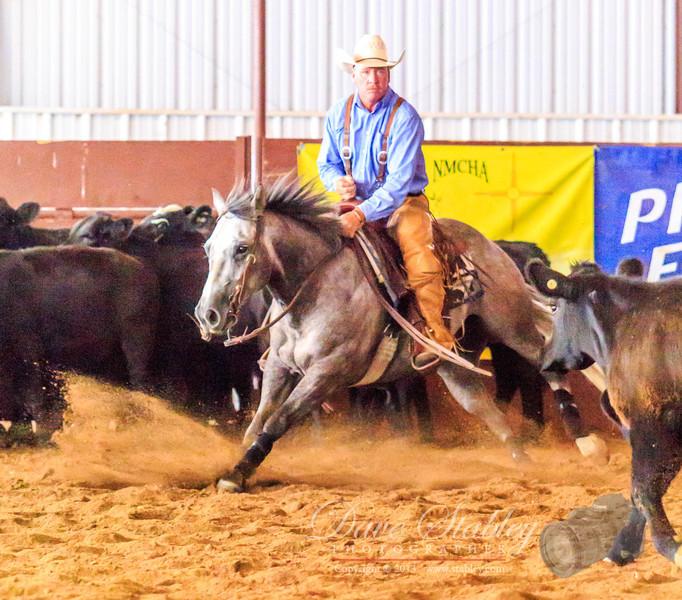 NM Cutting Horse-7023