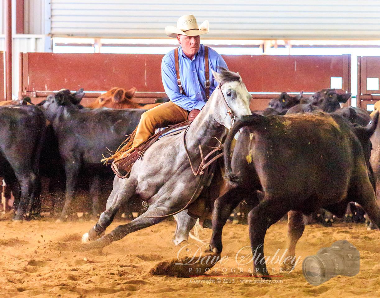 NM Cutting Horse-7017