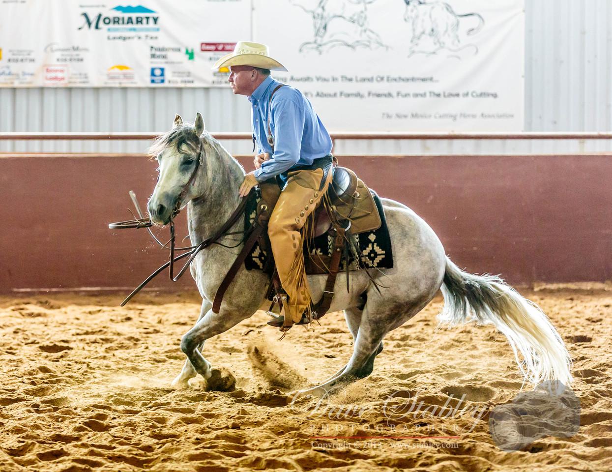 NM Cutting Horse-6724