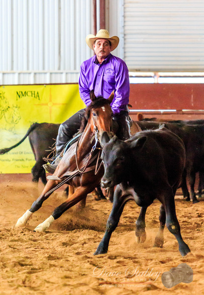 NM Cutting Horse-6979