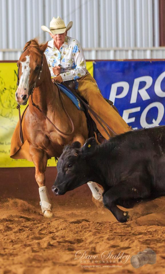 NM Cutting Horse-6864