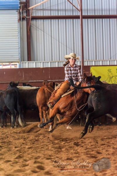 NM Cutting Horse-6177