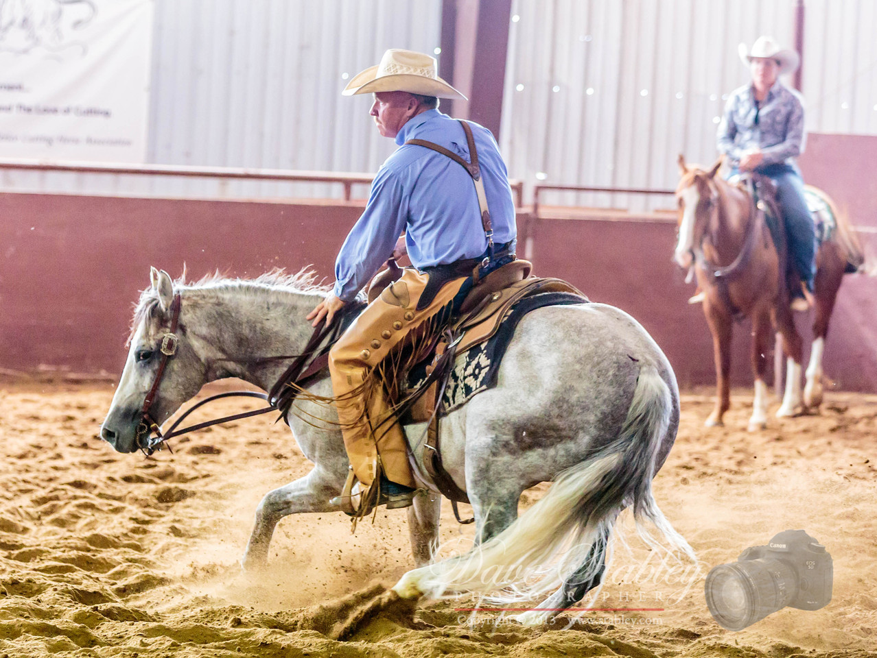 NM Cutting Horse-6749