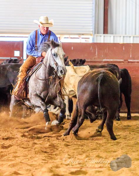 NM Cutting Horse-7018