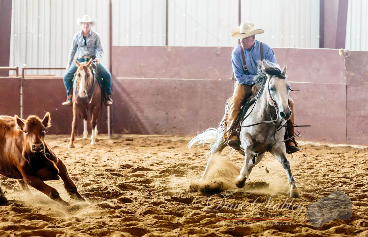 NM Cutting Horse-6746
