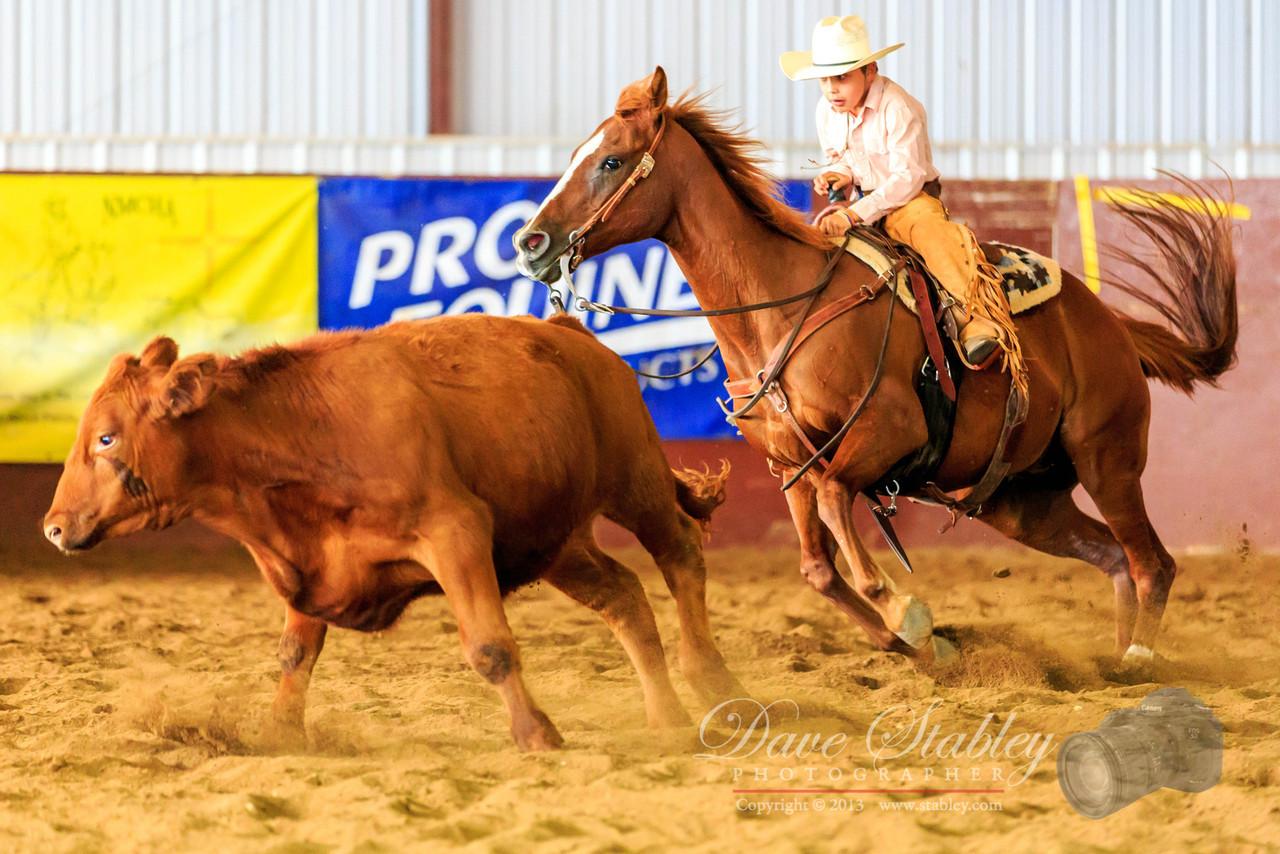 NM Cutting Horse-6914