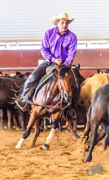 NM Cutting Horse-6982