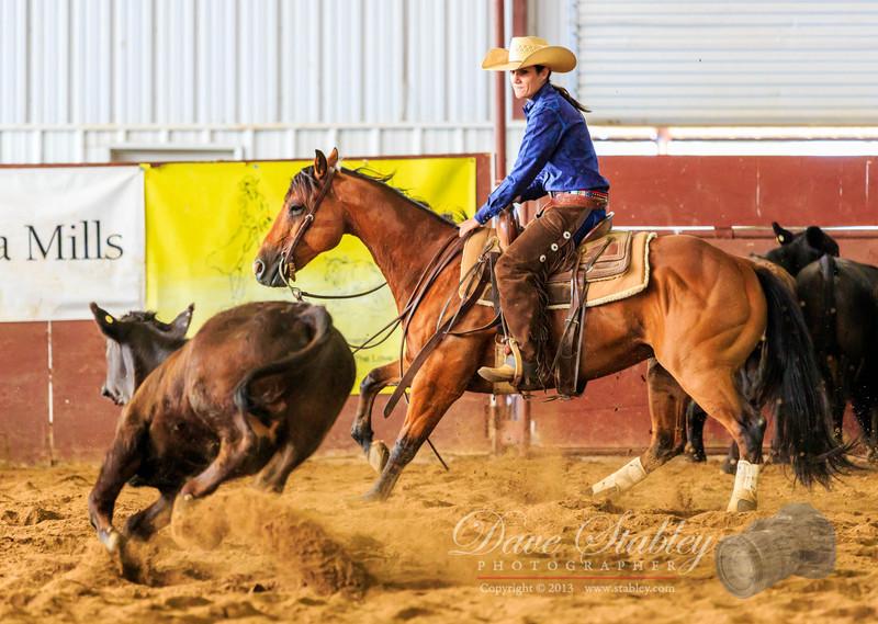NM Cutting Horse-6877