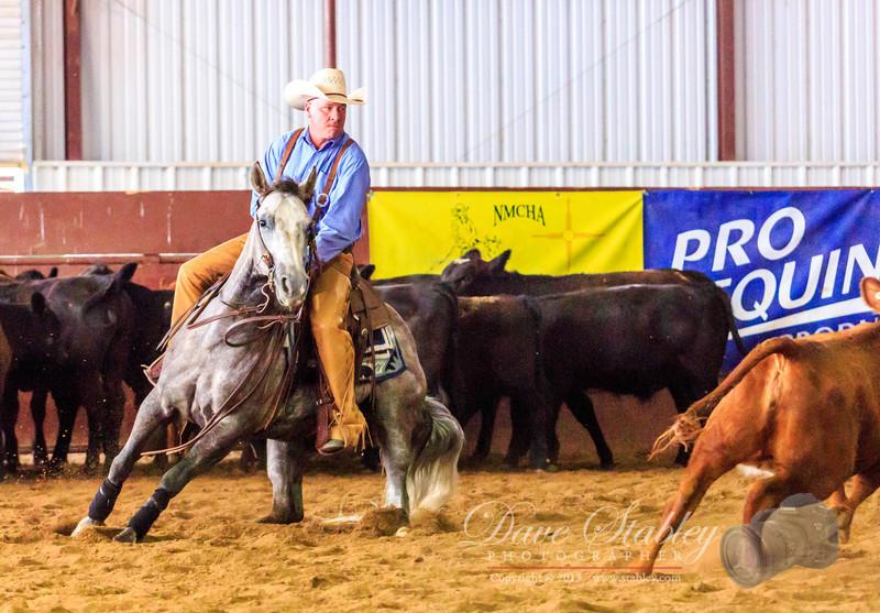 NM Cutting Horse-7007