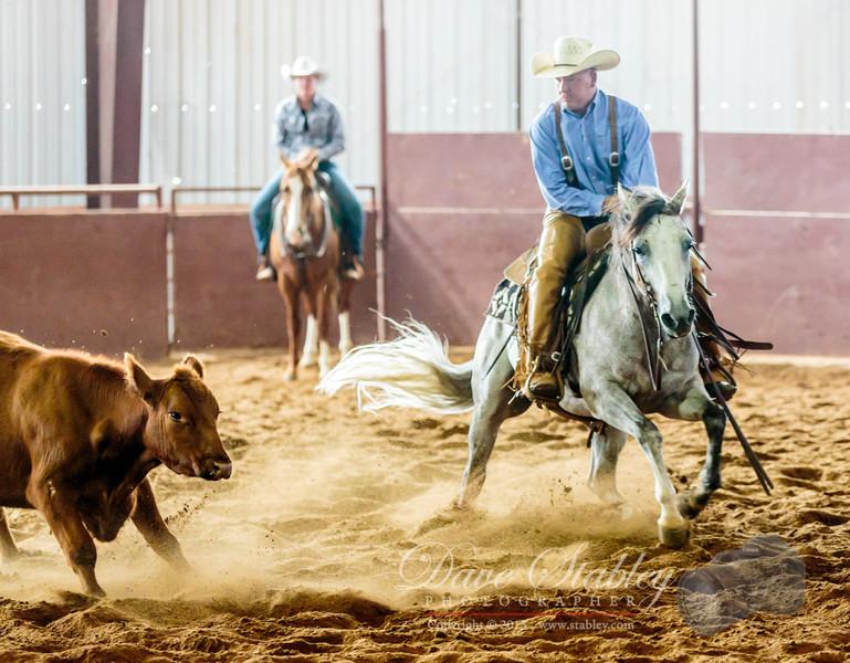 NM Cutting Horse-6742