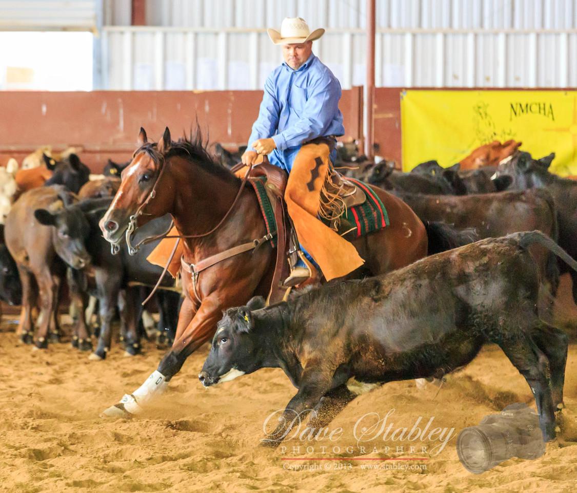 NM Cutting Horse-6822