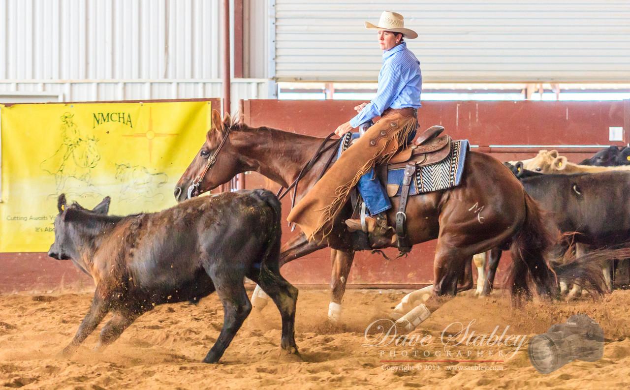 NM Cutting Horse-6160