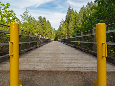 Yet another trestle