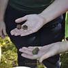 <b>Showing Off Seed Pods</b> <b>Marshall Foundation Cypress Harvest</b>  October 25, 2014 <i>- Anthony Lang</i>