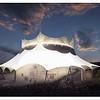 New Cirque du Soleil Show at Walt Disney World Resort