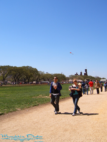 Kites and people on National Mall