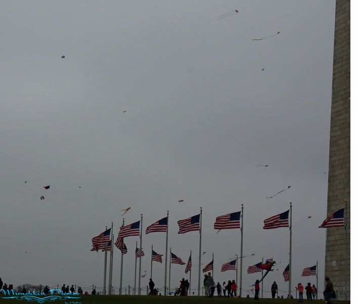 Dreary day for kites.